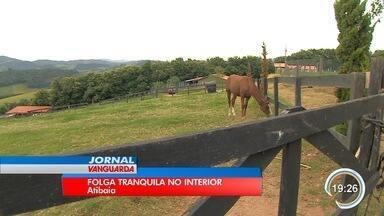 Atibaia oferece atrações para quem quer fugir da agitação - Hoteis-fazenda são opções para os turistas.
