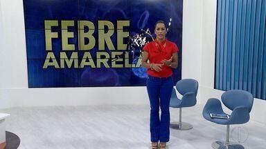 Vainação contra a febre amarela será intensificada em Maricá e municípios vizinhos - Assista a seguir.