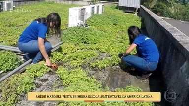 Escola pública ensina alunos a fazer manutenção de telhado verde e criar novas mudas - Instituição é a primeira escola sustentável da América Latina