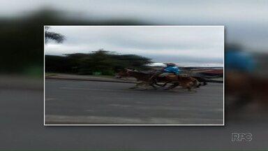 Grupo vai a cavalo do Paraná à Aparecida - Tropeiros saíram de Rio Azul e passaram por Ponta Grossa.