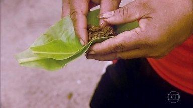 Plantas medicinais são usadas no lugar de remédios em Yap - Na Micronésia, a relação com o meio ambiente é fonte de alimento e remédio. Curandeiros sabem reconhecer o valor das plantas nativas.