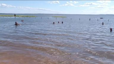 Banhistas são atacados por piranhas na praia da Graciosa - Banhistas são atacados por piranhas na praia da Graciosa