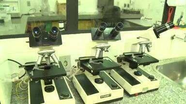 Hospital Veterinário Universitário passa a realizar cirurgias em animais de grande porte - Hospital Veterinário Universitário passa a realizar cirurgias em animais de grande porte