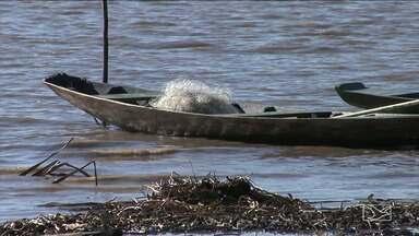 Moradores de Pindaré-Mirim pedem ajuda contra pesca predatória - Uma operação conjunta da Polícia Militar, Ministério Público e Secretaria Municipal De Meio Ambiente foi feita para combater esse tipo de crime