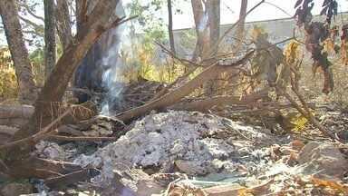 Corpo de bombeiros já atenderam a mais de 240 incêndios em Cuiabá e VG - Corpo de bombeiros já atenderam a mais de 240 incêndios em Cuiabá e VG.