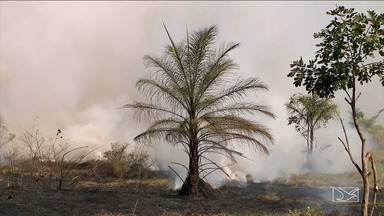 Em menos de 24 horas Corpo de Bombeiros combate dois focos de incêndio no MA - Focos de incêndio foram combatidos no município de Imperatriz.