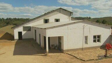 Polícia investiga fazenda por suspeita de receptação ilegal de café em Muzambinho (MG) - Polícia investiga fazenda por suspeita de receptação ilegal de café em Muzambinho (MG)