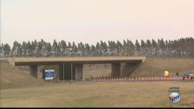Rodovia SP-215, que liga São Carlos à Ribeirão Bonito, passa por obras - Confira os pontos de interdição.