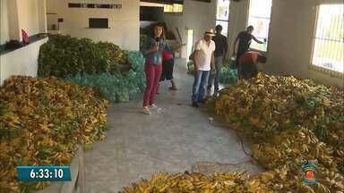 Bom Dia Paraíba dá dicas de como aproveitar as propriedades nutritivas da banana - Preço da fruta está caindo e ela é bastante saudável.