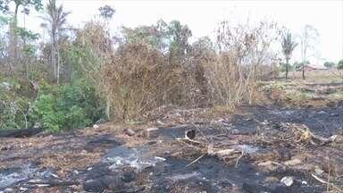 Incêndio destrói área de preservação ambiental em Ariquemes - Pessoa que colocou fogo não foi identificada.