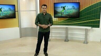 Veja os destaques do Jornal do Campo deste domingo (13) - Veja os destaques do Jornal do Campo deste domingo (13)