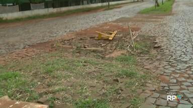 Moradores esperam que prefeitura resolva os problemas de alagamentos de algumas ruas - Telespectadores chamam ao vivo a equipe do Paraná TV