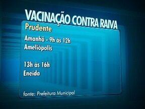 Confira o cronograma da campanha de vacinação contra a raiva - Cães e gatos devem ser imunizados.