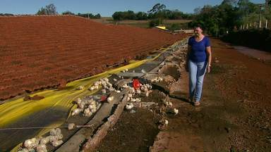 Temporal assusta e causa prejuízos em cidades da região oeste - Casas tiveram o telhado danificado por causa das pedras de gelo e até aviário caiu.