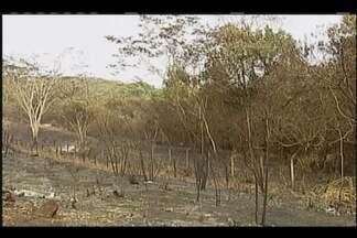 Incêndio entre Uberaba e Conceição das Alagoas é o maior já registrado na região - Bombeiros informaram que área atingida ainda está sendo contabilizada. Chamas foram controladas.
