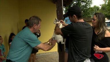 Cidades da Grande Vitória fazem campanha de vacinação contra raiva - Serra e Cariacica fazem ações neste fim de semana. Vitória já concluiu a imunização e Vila Velha deve fazer 'porta a porta' na terça-feira (29).