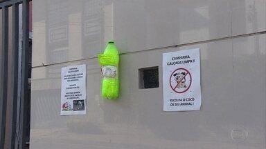 Moradores criam campanha contra fezes de cachorro na rua em bairro de BH - Suportes com sacolinhas plásticas foram instalados
