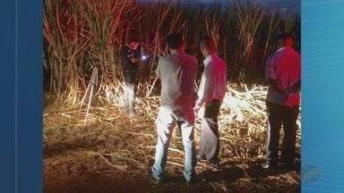 Corpo de homem é achado com marcas de tiros na cabeça em Miguelópolis, SP - Sitiantes encontraram o corpo em canavial próximo à Rodovia Paulo Borges de Oliveira.