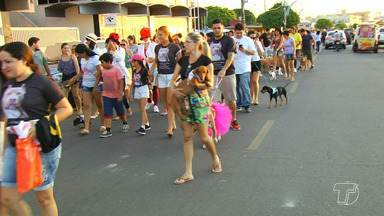 Mais de 300 cães participaram da 1ª Cãominhada em Santarém - Primeira edição do evento foi realizada no sábado (26).