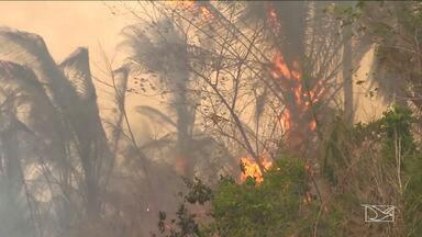 Calor e ventos fortes preocupam moradores em Caxias - Fenômenos voltam a preocupar moradores de Caxias que, há cerca de um ano, sofreram com os incêndios que destruíram casas e plantações e mataram animais.