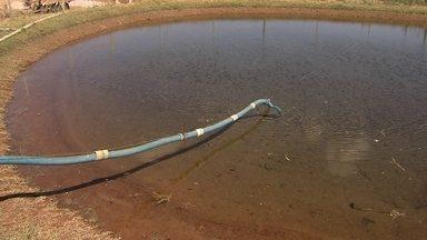 Produtores rurais usam técnica simples para garantir água para as lavouras na seca - Hoje, um a cada quatro agricultores da Bacia do Descoberto já tem um lago lonado.