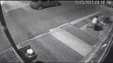 Câmeras de segurança flagram furto de plantas em Araguaína - Câmeras de segurança flagram furto de plantas em Araguaína