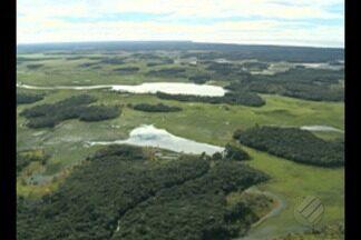 STF deu 10 dias para Governo Federal explicar porque decidiu extinguir reserva ambiental - A reserva fica na divisa entre o Pará e o Amapá.