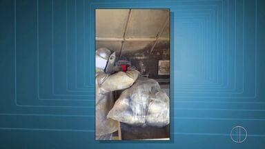 Polícias Civil e Federal destroem uma tonelada de drogas apreendida em Macaé, no RJ - Assista a seguir.