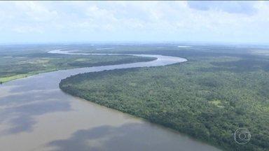 Governo anuncia novo recuo sobre reserva mineral na Amazônia - Ministro de Minas e Energia paralisou os efeitos do decreto que extinguiu a reserva, depois de consultar o presidente Michel Temer.