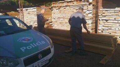 Empresa é multada em R$ 22 mil por venda e armazenamento de madeira sem licença - Segundo a Polícia Ambiental, documentação de madeireira não era compatível com estoque.