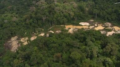 Sobrevoo mostra ao menos 12 pistas e diversas áreas de garimpo na Renca - Nesta segunda-feira (11), um debate sobre a possível extinção da reserva foi realizado na Assembleia Legislativa, em Macapá.