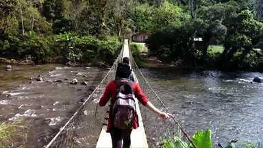Alunos da zona rural caminham até três horas para chegar a escola em Guaratuba - Crianças caminham por quilômetros, cruzam pontes perigosas e se arriscam para estudar. Isso porque a van do transporte escolar não chega até elas por que não existe uma estrada decente.