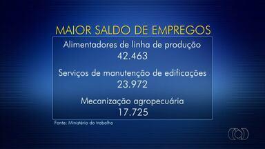 Pesquisa do Ministério do Trabalho diz que mercado está reagindo - Pesquisa do Ministério do Trabalho diz que mercado está reagindo
