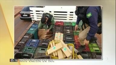 Polícia descobre mais de 3 toneladas de maconha entre hortaliças em dois caminhões em MS - Os policiais tiveram que contar com o apoio de um helicóptero para prender o motorista de um dos veículos.