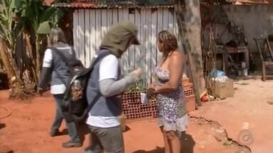 Araçatuba tem praticamente um caso de picada de escorpião por dia - Os moradores de Araçatuba (SP) estão em alerta com os escorpiões depois que uma criança de 4 anos morreu picada neste sábado (16).