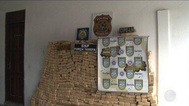 Polícia apreende 800 quilos de maconha na BR-116 sul, região de Feira de Santana - A droga estava em uma carreta.