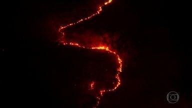 Por causa de queimadas, floresta no médio Araguaia deve desaparecer - Em um mês, uma área igual a três vezes a cidade de São Paulo queimou. Com o fogo sem controle, instituto suspendeu trabalho dos brigadistas.