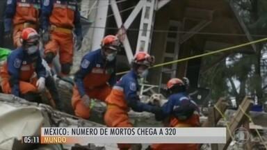 Terremoto deixa dezenas de cães e gatos perdidos pelas ruas do México - Os animais de estimação estão sendo adotados temporariamente pelos mexicanos enquanto os donos não aparecem. O tremor provocou a morte de 320 pessoas e casou destruição pelo país.