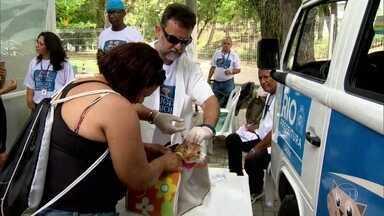Rio tem campanha de vacinação contra a raiva - Neste sábado (7) acontece a terceira etapa de vacinação antirrábica. A expectativa é que mais de 100 mil animais sejam vacinados. O foco são as Zona Norte e Oeste da cidade.