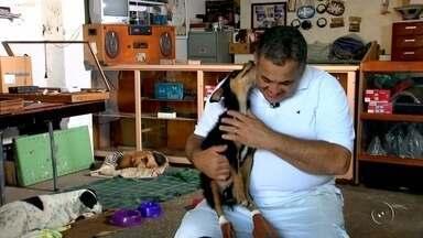 História entre empresário e cão deficiente mostra exemplo de companheirismo - A história de amizade de um empresário e o Barney mistura deficiência física, criatividade e muito amor.