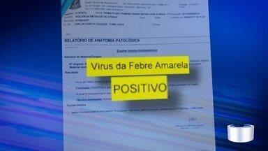 Macaco morre com febre amarela e Atibaia faz mutirão de vacinação - Mutirão será no fim de semana.