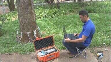 Prefeitura de Araraquara utiliza tomógrafo para identificar árvores condenadas - Medida pretende evitar os acidentes com quedas das plantas na cidade.