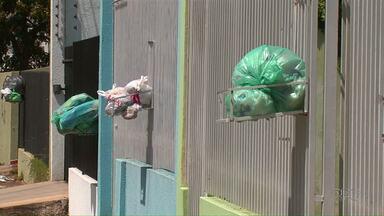 Moradores do Santa Cruz reclamam de coleta de lixo no bairro - Segundo a Surg coleta não aconteceu devido a feriado