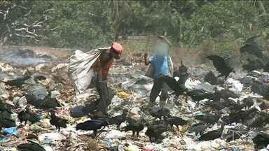 Crianças são encontras catando lixo na Região Metropolitana de São Luís - São terrenos improvisados para receber o lixo das cidades, onde se joga até lixo hospitalar a menos de dois quilômetros de um braço de mar
