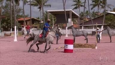 Campeonato brasileiro de cavalos chama atenção de banhistas na Praia de Maracaípe - Evento ocorre em Ipojuca, na Região Metropolitana do Recife.