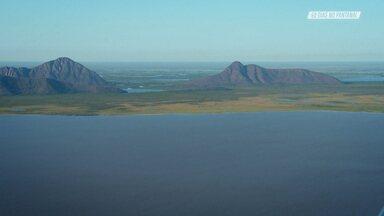 Sobrevoando O Pantanal