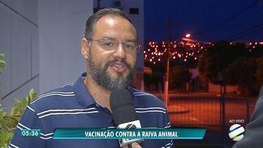 Vacinação contra raiva para cães e gatos em Rondonópolis será no sábado - Vacinação contra raiva para cães e gatos em Rondonópolis será no sábado.