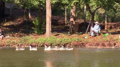 Parque da pedreira é liberado para pesca em Mandaguari - Moradores aproveitam o feriado para descansar e curtir pesqueiro.