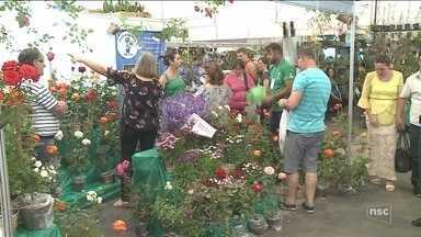 79ª Festa das Flores atrai visitantes e movimenta economia em Joinville - 79ª Festa das Flores atrai visitantes e movimenta economia em Joinville