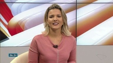 Café arábica fecha R$ 432 a saca no ES; veja outras cotações - Já o Conilon fechou em R$ 353 a saca.